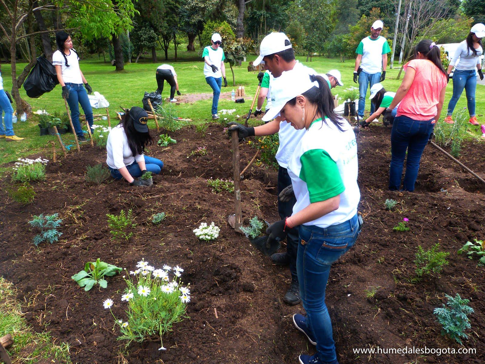 Jardinesbiodiversos humedalesbogota  121 de 138